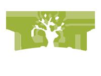 Making Roots Montessori Centre Inc's Company logo